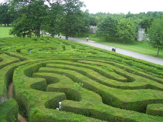longleat__hedge_maze_-_geograph-org-uk_-_1225441